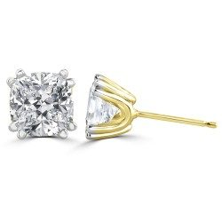 Double prong cushion ear studs